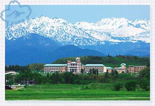 高校 片山 学園