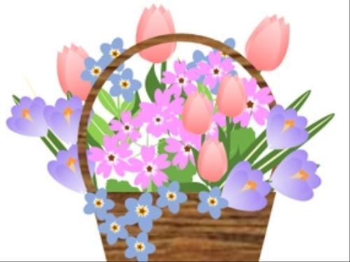 ワード初級春の花を描こう2 ライフ 読売新聞オンライン