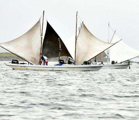 波間に浮かぶ三角形の帆、ホッカイシマエビ漁始まる